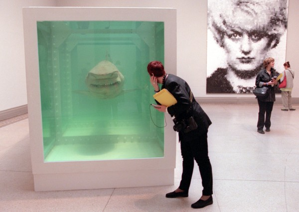 Damien Hirst's 'The Physical Impossibility of Death in the Mind of Someone Living.' (AFP Photo/Doug Kanter)