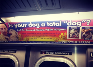 Dr. Armond's subway ad. (Twitter)