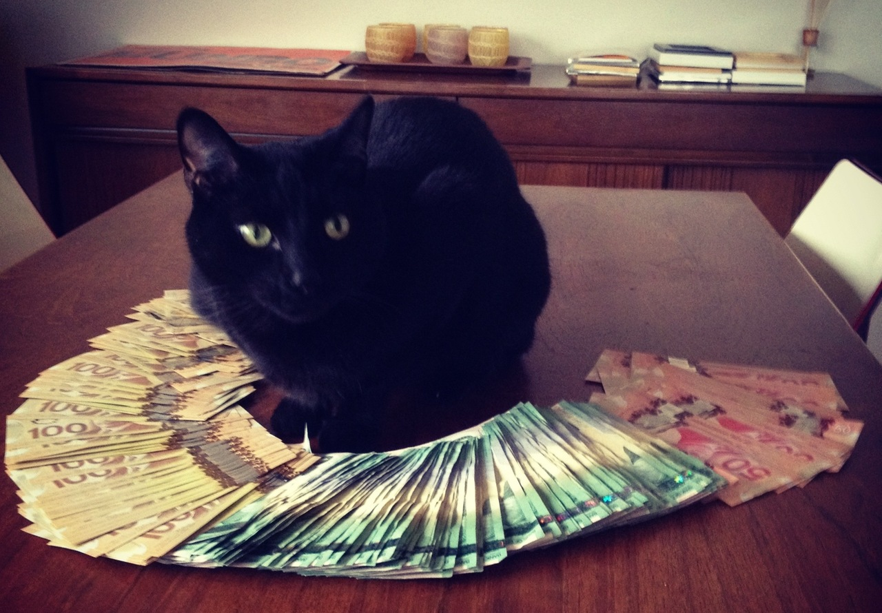 """Shit, it's the cops!"" (Cashcats.biz)"