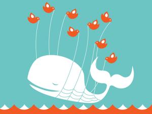 Congress Fail Whale (Photo: blogspot.com)