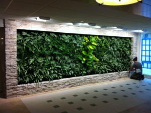 The living green wall.