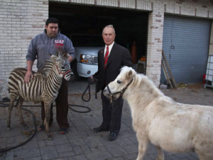 A photoshopped rendition of Mayor Bloomberg and the infamous escaped zebra and horse. (Photo: MikeBloomberg.com)