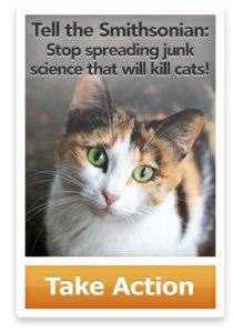 (Photo: Alley Cat Allies)