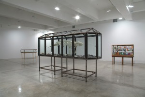 Installation view of Dion's current show at Bonakdar. (Courtesy Tanya Bonakdar Gallery)