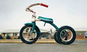 """""""Memphis (Tricycle)"""" by William Eggleston, 1970, an edition of which is owned by Mr. Sobel."""