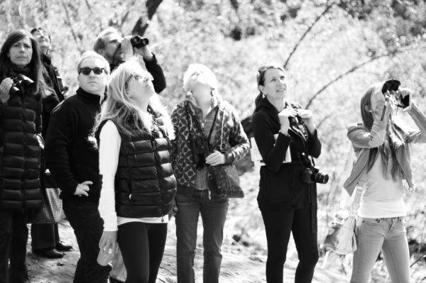 Birders in Central Park. (Photo credit: Michael Chen)