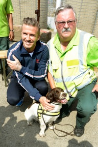 David Beckham, left, meets another bomb-sniffing dog and a security guard. (John Stillwell/PA Wire)