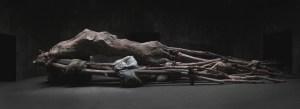 "Berlinde De Bruyckere, ""Cripplewood,"" 2012-2013."