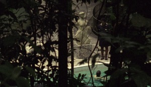 Video still of 'Canoas' (2010) by Tamar Guimarães. (Courtesy the artist and Galeria Fortes Vilaça)