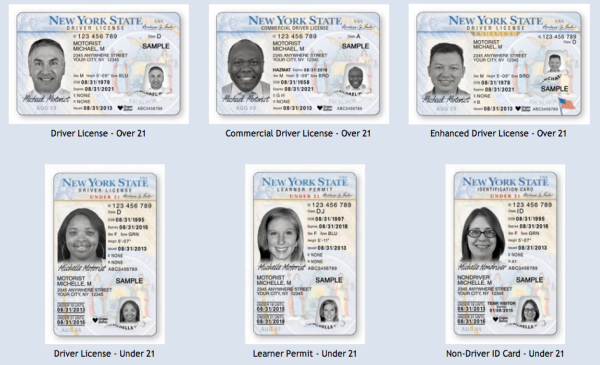 Screengrab from New York Department of Motor Vehicles' website.