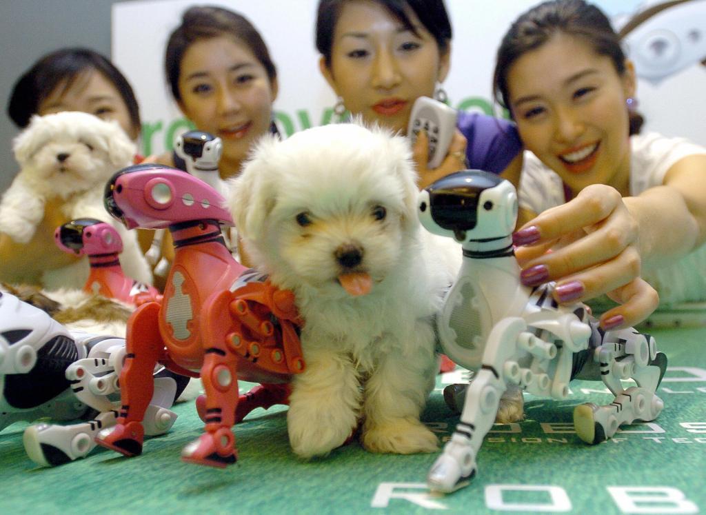 HI, DOG. HI. (JUNG YEON-JE/AFP/Getty Images)
