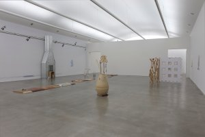 Installation view. (Photo by Jean Vong/Hessel Museum of Art)