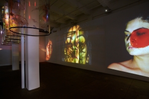 Installation view of 'In Search of Vanished Blood.' (Courtesy Galerie Lelong)