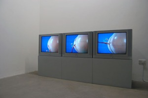 Installation view of Sturtevant's 'Trilogy of Transgression' three-channel video. (Courtesy Chelsea Space)