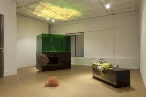 Installation view of 'Ajay Kurian: Proleptic' at 47 Canal. (Courtesy 47 Canal)