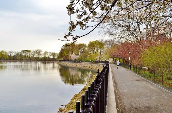 ​The Central Park Reservoir. A seven foot high chain link fence was replaced with a steel cast-iron design in 2003. A $100 million donation in 2012 has allowed for further capital improvements. (Photo by @gigi_nyc)