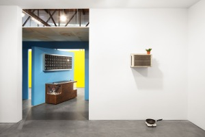 Installation view of 'Mika Rottenberg: Bowls Balls Souls Holes.' (Photo by Lance Brewer, courtesy Andrea Rosen Gallery)