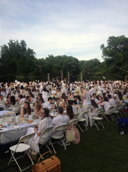 The white-out in a Prospect Park meadow. (Meredith Carey)