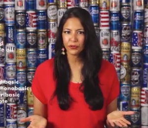 Vani Hari in front of a beer wall. (Screengrab via YouTube)