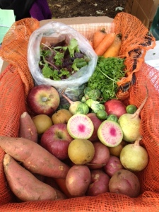Another example of a Fresh FoodBox. (Courtesy of GrowNYC)