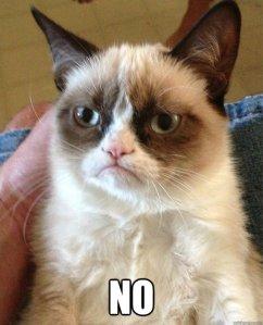Sorry, kitty cat. (Image via Quickmeme)