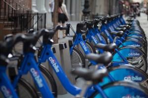 Bikes! (Amanda Cohen, the Observer)