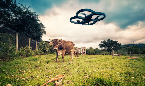 Drones are finding their way into industry and agriculture, and experienced pilots are in sudden demand. (Photo by Lima Pix)