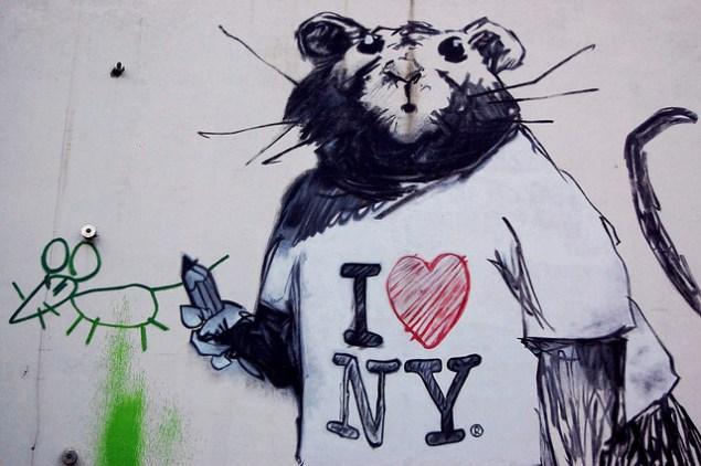 New York City struggles with rat infestation. (Ludovic Bertron/Flickr)