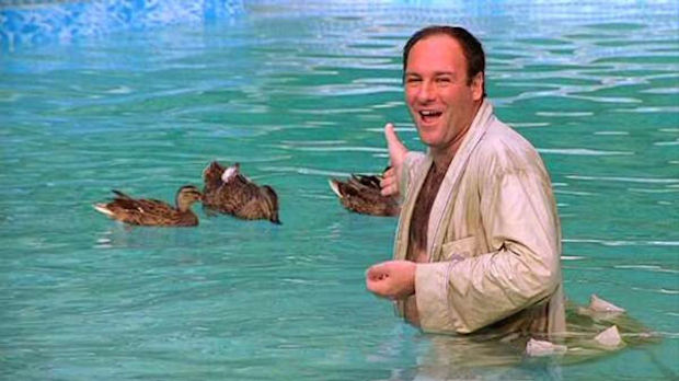 Tony and his ducks (HBO)