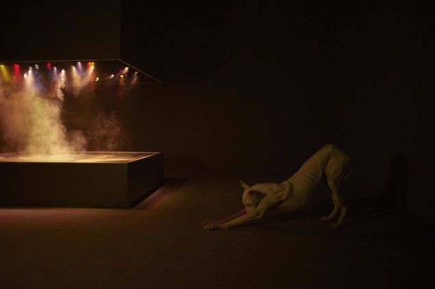 Installation view of the exhibition Pierre Huyghe at the Centre Georges Pompidou, September 2013–January 2014, © Pierre Huyghe, courtesy Marian Goodman Gallery, New York/Paris, photo by Pierre Huyghe)