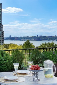 A rooftop terrace offers views of the Hudson.