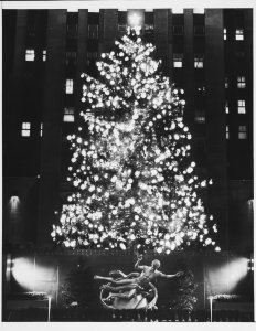 A Norway spruce is the only type of tree used in Rockefeller Center (1960).