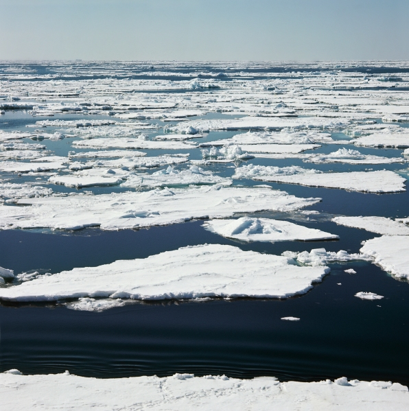 The next spot for a biennale is Antarctica. (Courtesy Getty Images)
