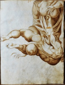 Reach out and touch -- one example of drawings an album of rare 16th century drawings after figures in Michelangelo's The Last Judgment altarpiece in Vatican City's Sistine Chapel, to be offered for sale by PRPH Rare Books at Master Drawings New York 2015.