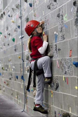 Get a university education in scaling rock walls. (Photo: Cornell Climbing Camp)