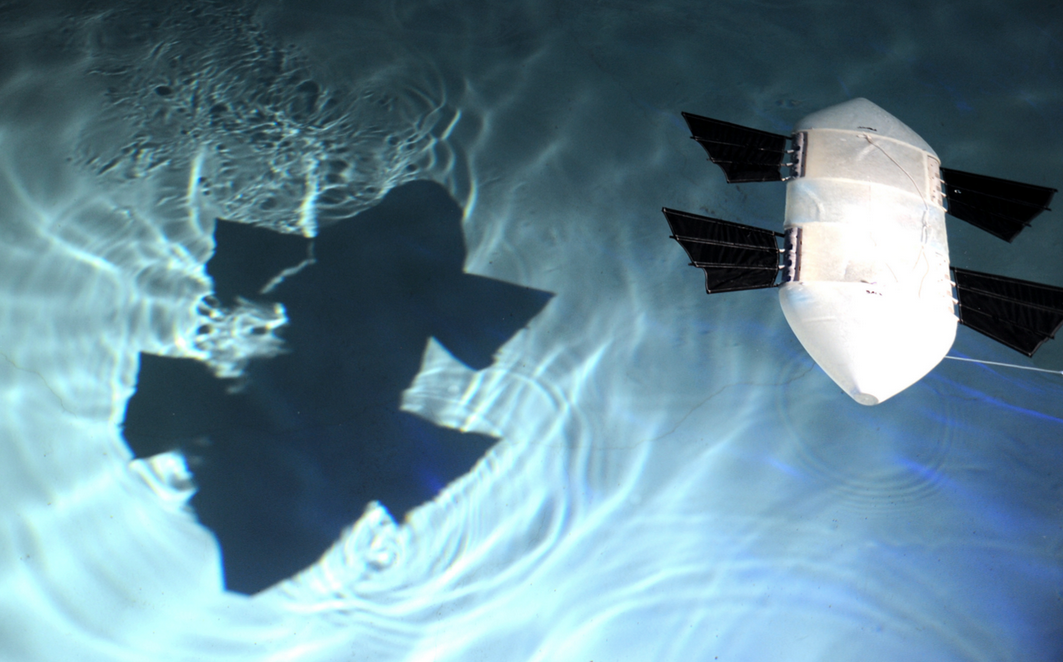 Most drones can't operate in shallow water, but WANDA is meant to be extra light and maneuverable. (Photo: U.S. Navy)