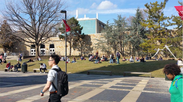 Temple University has assembled a task force to recommend new policies for sexual assault prevention. (Photo: Facebook)