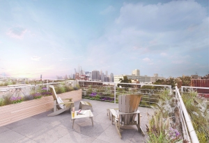 The Red Hook of the future: rendering of a roof view from the King and Sullivan complex. Photograph by Francesco Sapienza for New York Observer