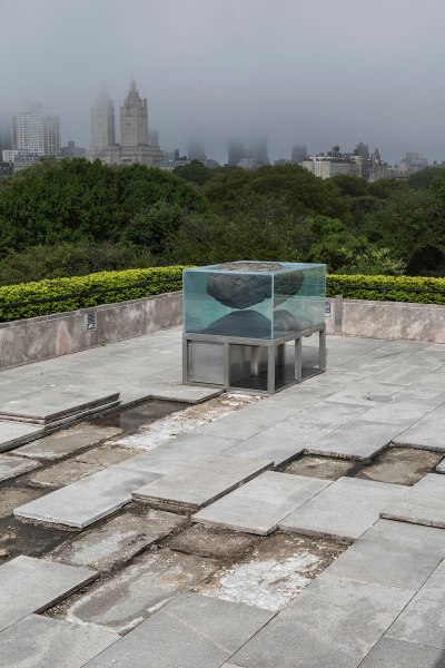 Installation view of The Roof Garden Commission: Pierre Huyghe at The Metropolitan Museum of Art, 2015. (Photo: courtesy the Met)