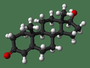 Testosterone (Wikipedia)