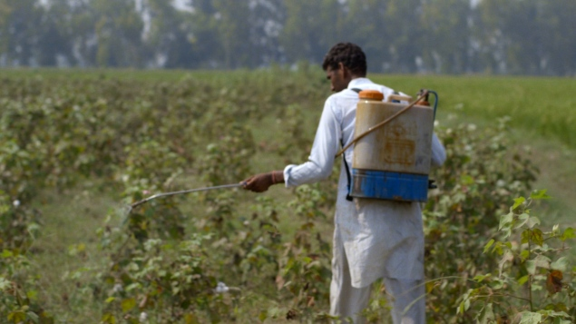 Cotton is sprayed with pesticides—to the detriment of nearby residents' health. (Photo: The True Cost)