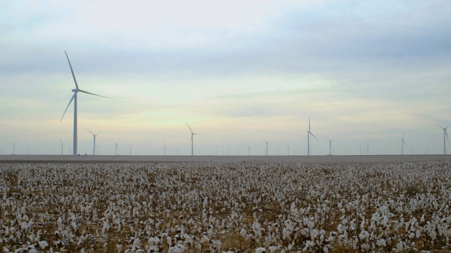 America's cotton farmers are also being harmed. (Photo: The True Cost)