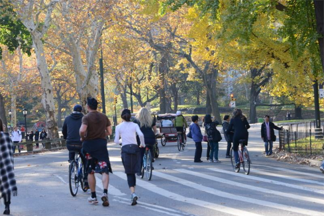 Runners in Central Park. (Photo: Facebook/Central Park)