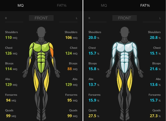 Results are transferred to the Skulpt Aim smartphone app. (Photo: Skulpt Aim)