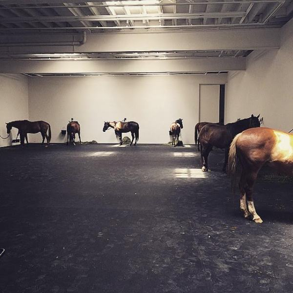 Untitled (12 Horses) at Gavin Brown Enterprise. (Photo: courtesy of @youaremyown_  [Martin Aguilera] via Instagram)