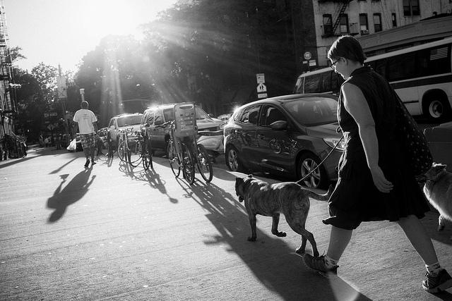 Mark Nye/flickr.