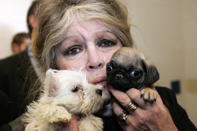 Brigitte Bardot holding some puppies in Nice 10 years ago. (Photo: Getty Images)