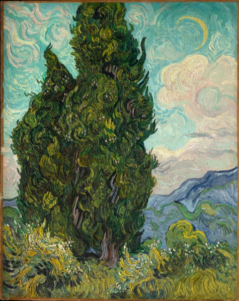 Cypresses (1889) by Vincent van Gogh. (The Metropolitan Museum of Art / Art Resource, NY)