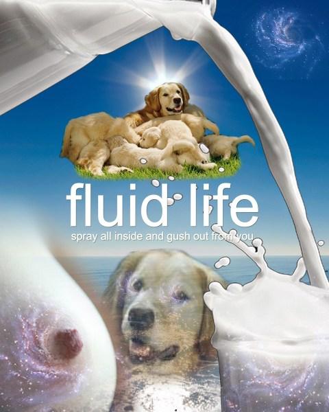 Fluid Life by James Howard
