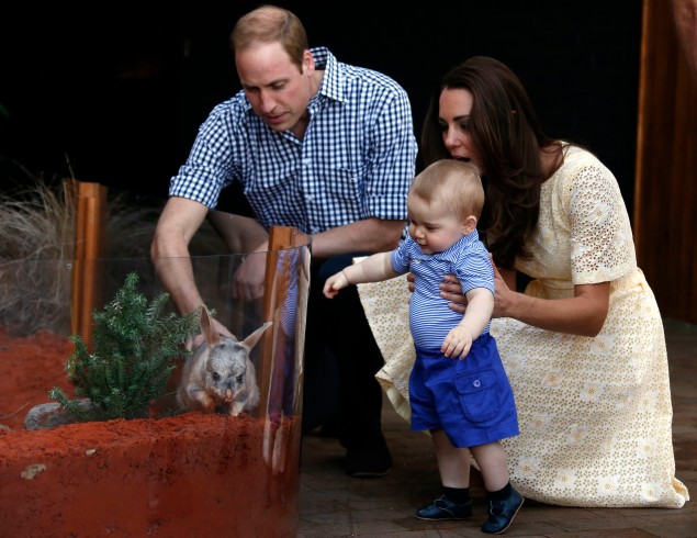 Prince George at Sydney's Taronga Zoo. (Photo: DAVID GRAY/AFP/Getty Images)